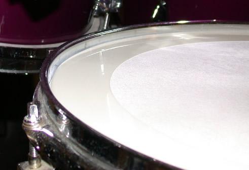 Snare Drum Muffler